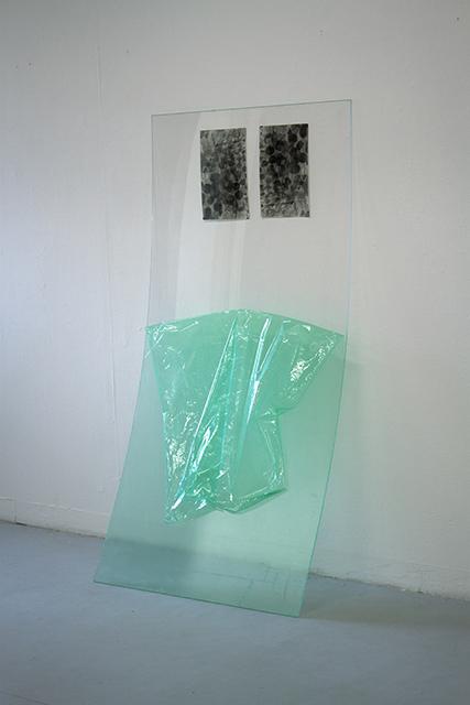 Fossiles-epreuves-argentique-sur-papier-baryte-plexiglas-film-de-protection-180-x-90-cm-2012